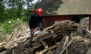 sawing wood for firing